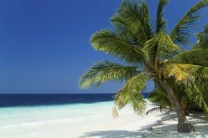 Plamen, Strand und blaues Meer