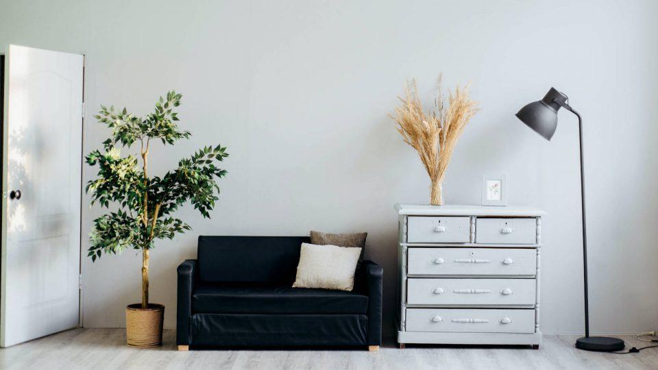 Raum mit Couch, Kommode, Lampe und Pflanzen