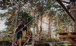 Mann klettert in Kletterpark