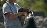 Ein kalifornischer Seehund wird von einem Tierpfleger-Azubi gefüttert